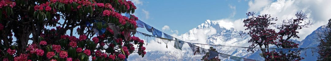 Best Time for Trekking in Nepal Himalayas