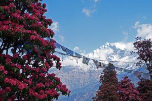 best-season-for-nepal-trekking-everest-annapurna