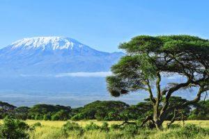 Climate Zones of Mount Kilimanjaro