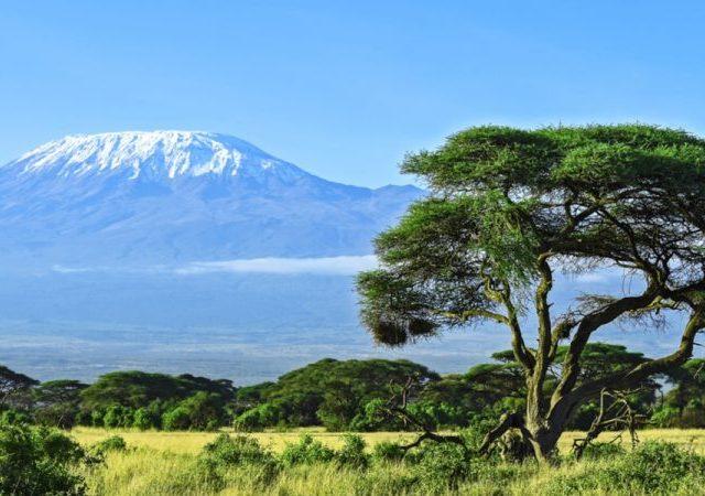 De vijf klimaatzones van Kilimanjaro