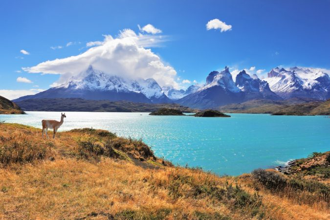 pehoe-lake-w-trek-patagonia-torres-del-paine