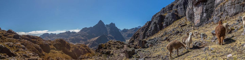 Lares trek to Machu Picchu (4 days) – Conde Travel