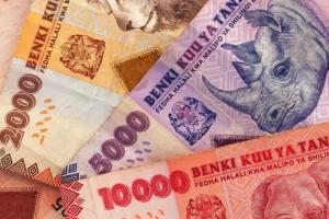 tipping-on-kilimanjaro-tanzanian-shilling