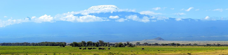 Lemosho Route (7 days) – Tanzania Joy Tours