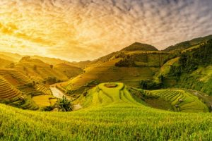 best-season-sapa-trekking-rice-fields-vietnam