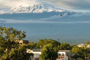 where-to-stay-in-moshi-kilimanjaro-climbing-accommodation-hotels-hostel