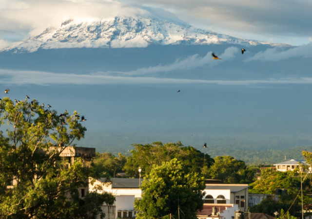 Where To Stay in Moshi – Before & After Kilimanjaro