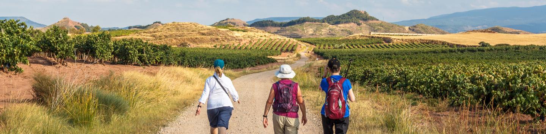 French Way- Sarria to Santiago (7 days) – GaliWonders